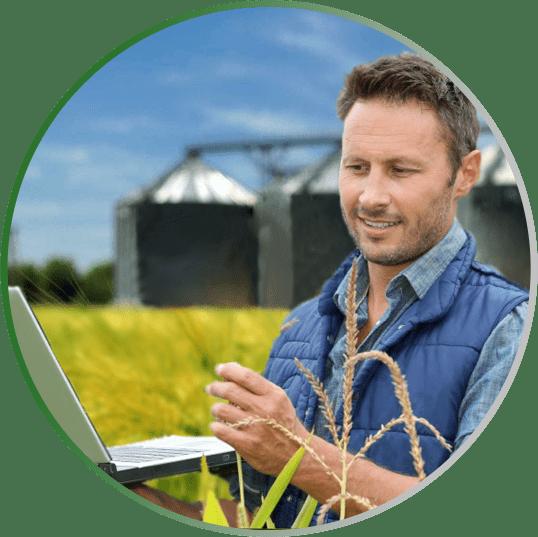 исследования зерна