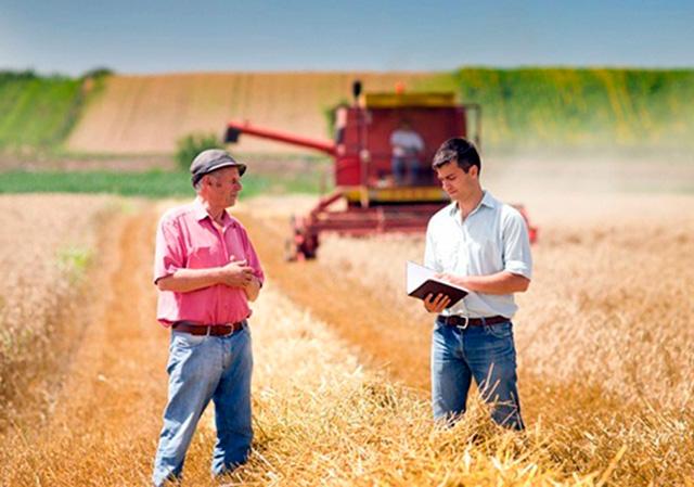 предложение для фермеров