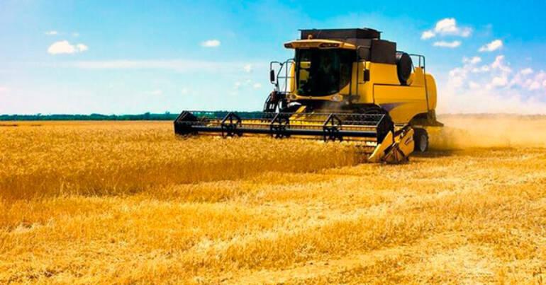 Як захистити зерновий врожай