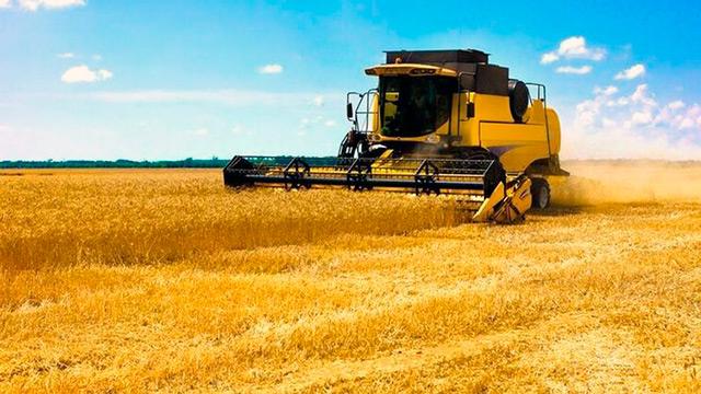 Как защитить зерновой урожай