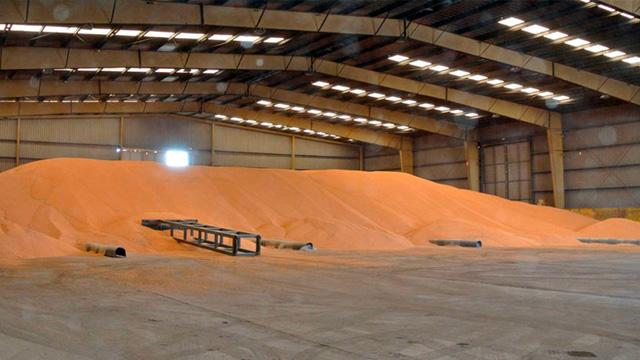 Какие правила хранения зерна: советы экспертов