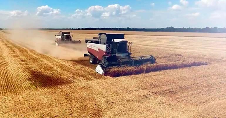 Сучасні технології обробітку зернових культур