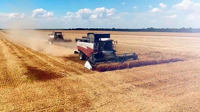 Современные технологии по обработке зерновых культур