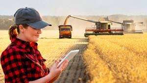 технологии сбора урожая