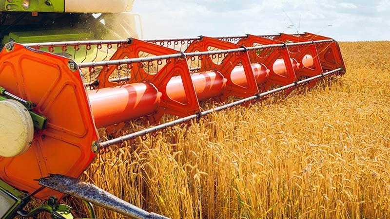 сбор урожая зерна